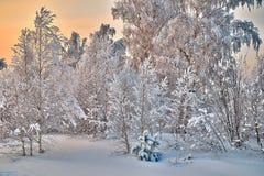 Paisaje de la puesta del sol del invierno Imágenes de archivo libres de regalías