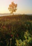 Paisaje de la puesta del sol del verano Imagenes de archivo