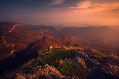 Paisaje de la puesta del sol del otoño foto de archivo libre de regalías