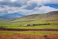 Paisaje de la sabana en Tanzania, África Fotos de archivo libres de regalías