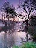 Paisaje de la salida del sol de la primavera Imágenes de archivo libres de regalías
