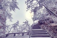 Paisaje de la salida del sol del invierno en el parque nacional de Huangshan Fotos de archivo libres de regalías
