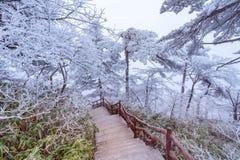Paisaje de la salida del sol del invierno en el parque nacional de Huangshan Imágenes de archivo libres de regalías