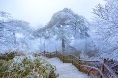 Paisaje de la salida del sol del invierno en el parque nacional de Huangshan Fotografía de archivo libre de regalías