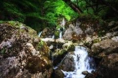 Paisaje de la selva con agua de la turquesa que fluye de la cascada georgiana de la cascada en la montaña de color verde oscuro d foto de archivo libre de regalías