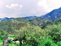 Paisaje de la sierra de Perú. landscape of the sierra of Peru. royalty free stock image