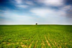 Paisaje de la soledad Imagen de archivo libre de regalías