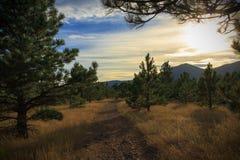 Paisaje de la tarde de Vista Trailhead de las planchas el temporada de otoño Fotografía de archivo