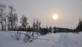 Paisaje de la tarde del invierno con nieve, el bosque y el sol frío Ocaso escarchado Imágenes de archivo libres de regalías