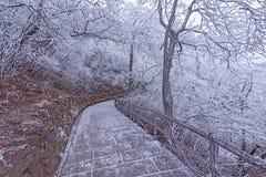 Paisaje de la tarde del invierno en el parque nacional de Huangshan Imagenes de archivo