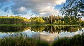 Paisaje de la tarde del verano en el lago Ural con los árboles de pino en la orilla, Rusia foto de archivo libre de regalías