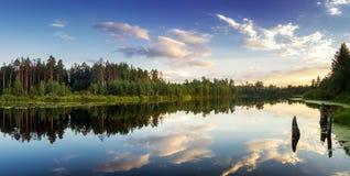 Paisaje de la tarde del verano en el lago Ural con los árboles de pino en la orilla, Rusia fotografía de archivo libre de regalías