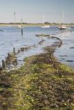 Paisaje de la tarde del verano tardío a través del puerto con los barcos Foto de archivo libre de regalías
