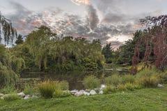 Paisaje de la tarde en la puesta del sol del día en un parque de la ciudad con un LAK imagenes de archivo