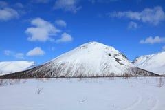 Paisaje de la tundra Fotografía de archivo libre de regalías