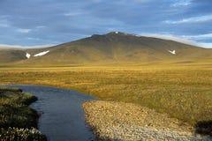 Paisaje de la tundra Imagen de archivo libre de regalías
