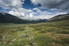 Paisaje de la tundra en Suecia septentrional Imagenes de archivo