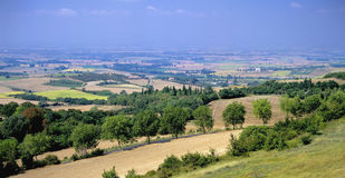 Paisaje de Languedoc Imagen de archivo