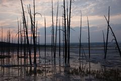Paisaje de las aguas termales de Yellowstone en la puesta del sol imagenes de archivo