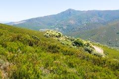 Paisaje de las montañas fotografía de archivo libre de regalías