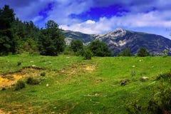 Paisaje de las montañas debajo del cielo nublado Imagen de archivo