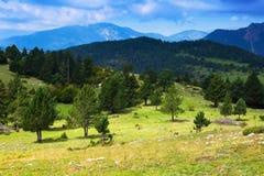Paisaje de las montañas en día de verano pyrenees imagen de archivo