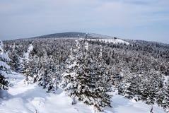 Paisaje de las montañas de Jeseniky del invierno en República Checa con la colina de Orlik Fotos de archivo
