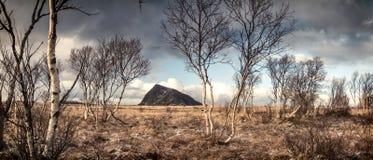 Paisaje de Lofoten con una montaña en fondo Foto de archivo libre de regalías
