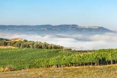 Paisaje de los campos de Toscana en la salida del sol Fotos de archivo