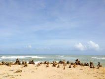 Paisaje de los Gallinas de Punta fotografía de archivo