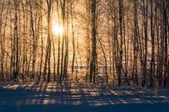 Paisaje de los Urales meridionales en invierno imagen de archivo