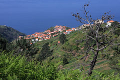 Paisaje de Madeira Imágenes de archivo libres de regalías