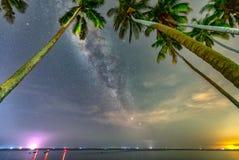 Paisaje de medianoche con la silueta de la palmera del coco y vía láctea en el cielo Fotos de archivo libres de regalías