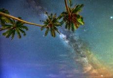 Paisaje de medianoche con la silueta de la palmera del coco y vía láctea en el cielo Imagenes de archivo
