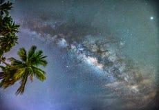 Paisaje de medianoche con la silueta de la palmera del coco y vía láctea en el cielo Imagen de archivo
