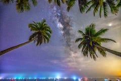 Paisaje de medianoche con la silueta de la palmera del coco y vía láctea en el cielo Fotografía de archivo