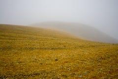 Paisaje de Minimalistic, niebla imagen de archivo