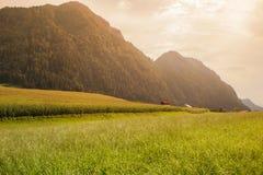 Paisaje de montañas y de la hierba del Tyrol del sur en Italia Imágenes de archivo libres de regalías