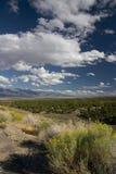 Paisaje de Nevada Foto de archivo libre de regalías