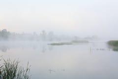 Paisaje de niebla con un lago Imagen de archivo libre de regalías
