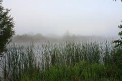 Paisaje de niebla con un lago Fotos de archivo libres de regalías