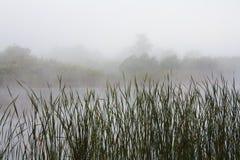Paisaje de niebla con un lago Imagenes de archivo