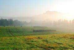 Paisaje de niebla del prado de la mañana con los árboles y las colinas Imágenes de archivo libres de regalías