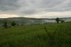 Paisaje de niebla en naturaleza Fotos de archivo