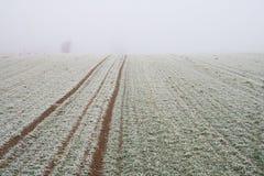 Paisaje de niebla misterioso del campo del invierno Foto de archivo