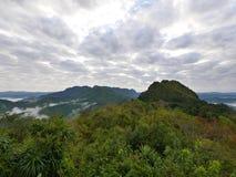 Paisaje de niebla tropical de la colina de la montaña del bosque Foto de archivo libre de regalías