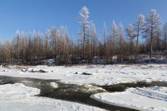 Paisaje de noviembre en Yakutia del sur, Rusia Imagen de archivo