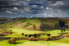 Paisaje de Nueva Zelanda, isla del norte Imagen de archivo libre de regalías