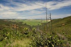 Paisaje de Nueva Zelandia Fotos de archivo