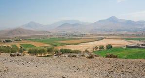 Paisaje de Oriente Medio con el bosque del cedro, montañas Foto de archivo